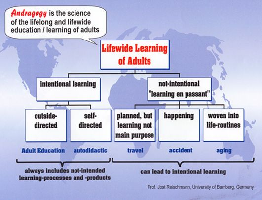 Structure of Lifewide Learning of Adults